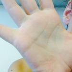 Meg Hand